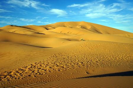 Sahara desert near Merzuga village in Morocco Standard-Bild - 97705249