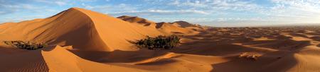 Big dunes and oasis in Sahara desert near Merzuga village in Morocco Standard-Bild - 97705399