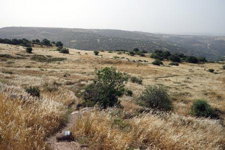 Footpath in Wadi Mezar national park in Israel