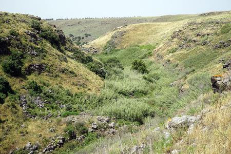 Gorge in Golan Heights in Galilee, Israel