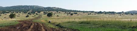 Pools on the dirt road in Galilee, Israel