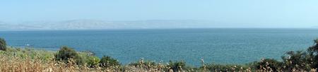 Flowers and Kinneret lake in Galilee, Israel