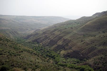 Green gorge in Galilee, Israel