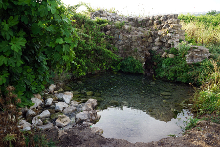 Spring with clean water near Nazareth Stock Photo - 102891060