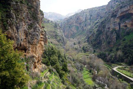Green Quadisha valley in Lebanon