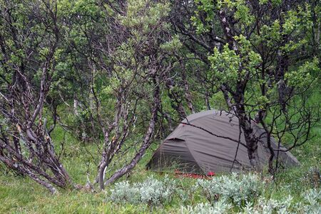 tent in forest in Norway