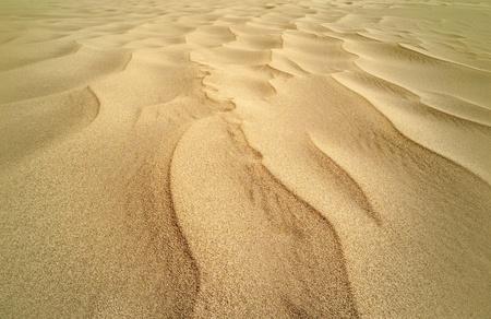 pilgramige: Desert Stock Photo
