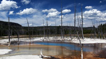 Black geyser spring in Yellowstone National Park Stock Photo