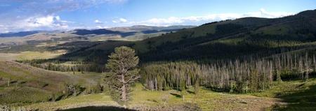Chittena Valley w Parku Narodowym Yellowstone, piękny widok na krajobraz z cieniami chmur