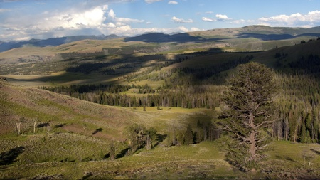 Chittena Valley in Yellowstone National Park, A beautiful landscape view with cloud shadows