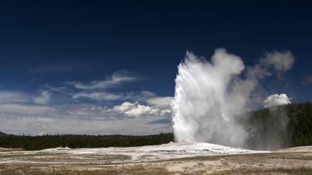 faithful: Old Faithful Geyser. Yellowstone National Park