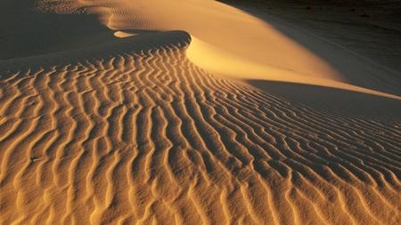 Lost in desert  Desert, waves, golden sand and sky.white sand.