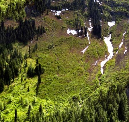Strome doliny wiosna  Steep futro pokryte doliny zamrożone sprężyny