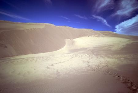 Footprints in sand dunes Zdjęcie Seryjne