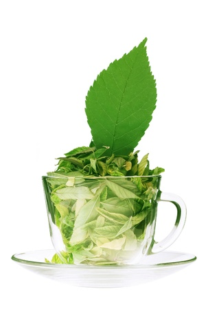 Tea cup of green tea and mint leaf