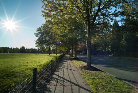 Sunlit boulevard with colored sun beams.