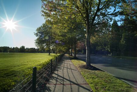 Sunlit boulevard with colored sun beams. Seen at Microsoft campus in late afternoon hours. Stock Photo