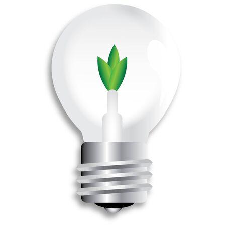 Renewable  bulb