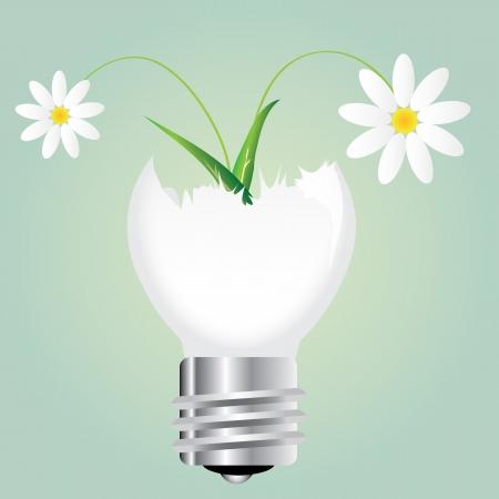 Flower in broken bulb