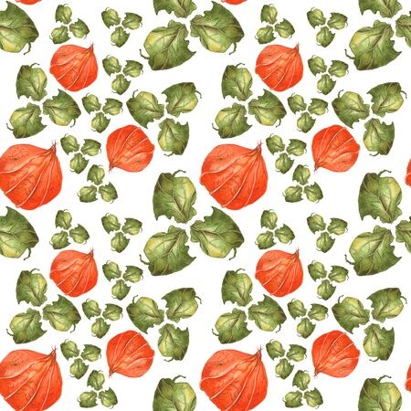 Orange flowers physalis and green leaves on white background. Seamless watercolor pattern. Could be used for textile or in design