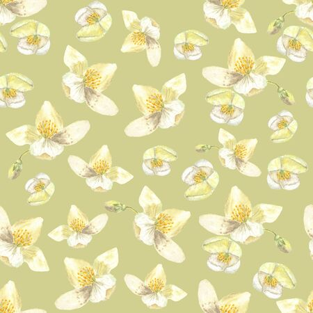 Botanical watercolor seamless pattern. Flowers and buds of Philadelphus. Can be used to create wedding invitations and prints of fabric. Drawing