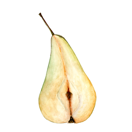Green pear cut isolated on white. Watercolor illustration Stock Photo