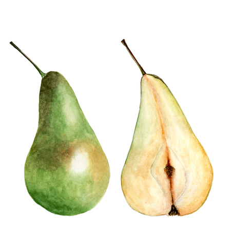 Whole pear and cut isolated on white background. Watercolor illustration