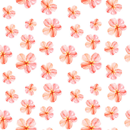 Handpainted watercolor seamless pattern with red mallow flowers Abutilon on white background 스톡 콘텐츠