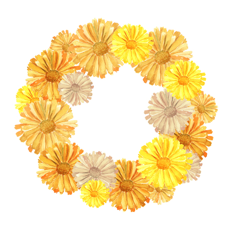 Round frame with orange Calendula officinalis also known as the field, marigold, ruddles flower close up. Watercolor hand drawn painting illustration isolated on a white background Imagens