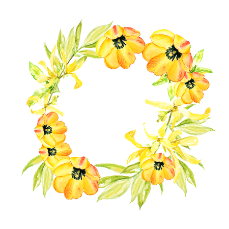 Easter wreath with yellow forsythia and yellow tulips. Square border. Watercolor illustration on white background