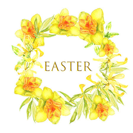 Easter wreath with yellow forsythia and yellow narcissus. Square border. Watercolor illustration on white background with text