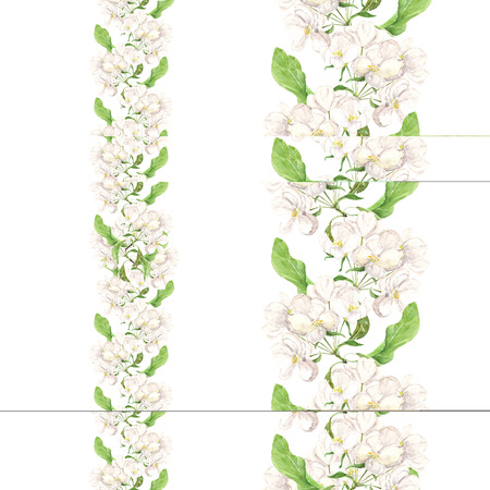 Apple pink flowers. Seamless floral border. Botanical watercolour painted edging Imagens