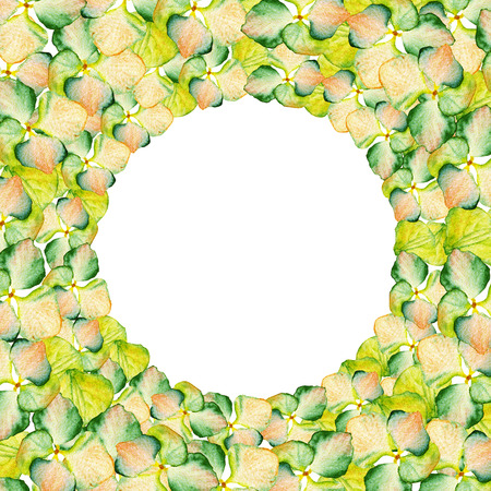 Watercolor green and yellow Hydrangea circle design with place for text. May be used for textile decoration print, invitation card, spring decor, wrapping paper and window decoration