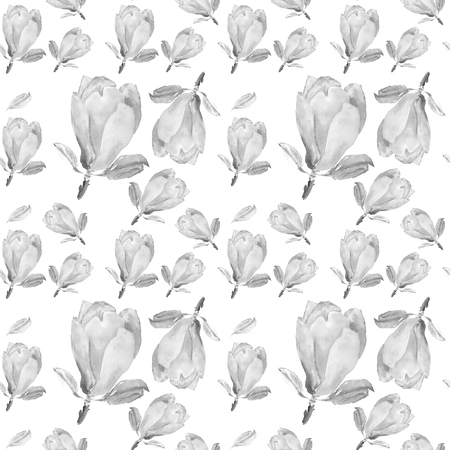 Watercolor seamless pattern with illustration of tender magnolia flower on white background Stok Fotoğraf