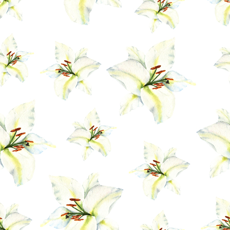 Watercolor seamless pattern with illustration of white lily flower on white background