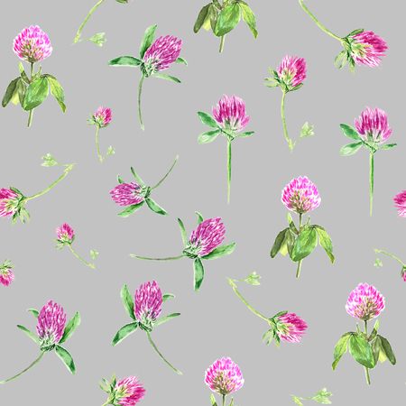 Watercolor clover isolated on gray. Gentle seamless pattern with blooming pink clover. Cute botanical wallpaper in Provence style