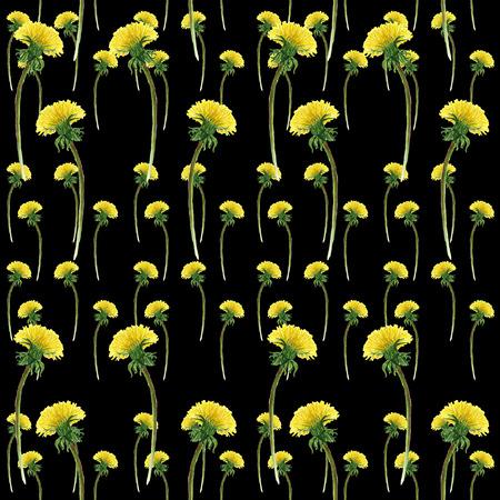 Watercolor dandelions on black. Seamless pattern with blooming dandelions. Botanical wallpaper in dark style