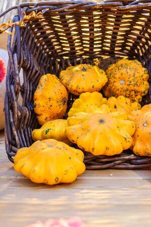 Display of pumpkins in basket in garden on wooden table