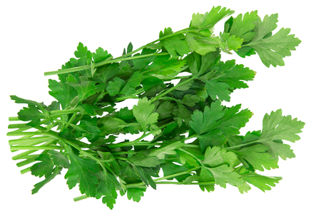 Fresh green parsley leaves isolated on white background