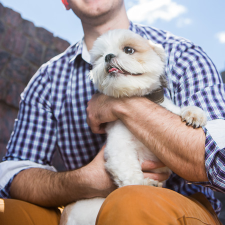 fashionable smiling man holding Small white dog sitting outside on sunny day, no face visible Stock fotó