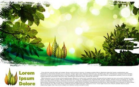Autumn leaf composition Stock Photo