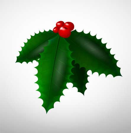 Isolated Christmas mistletoe
