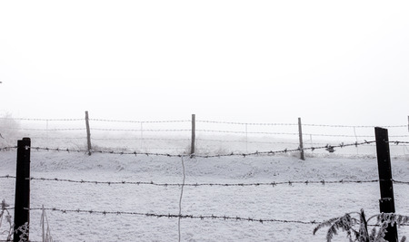 Barbed wier fence in misty winter day Stock Photo