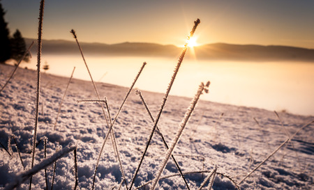 Cold winter sunset Stock Photo