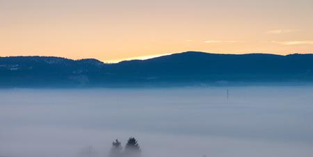 Foggy winter dusk