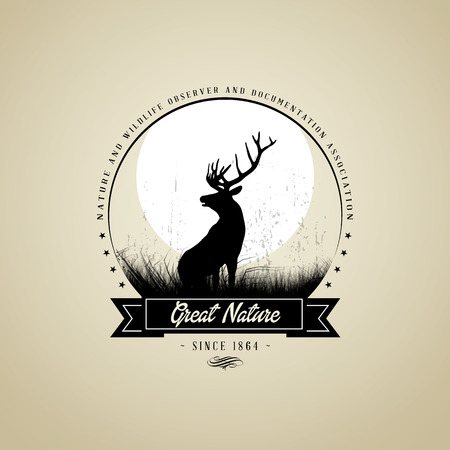 deer hunting: Great Nature