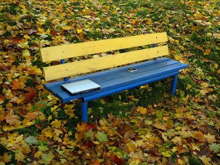 Hoja de Maple  Foto de archivo - 590946