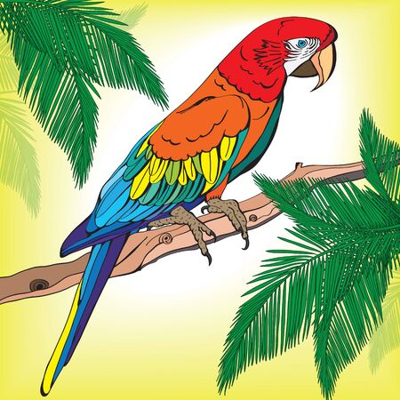 Illustration of a large parrot on a branch