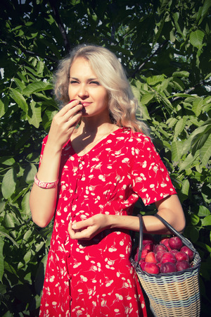 non urban 1: The photo shows a woman in a red sundress that she is holding a basket with plums. Stock Photo