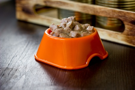 Canned pet food in a orange plastic bowl.